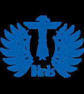 Pinellas Park T-Birds (Blue)